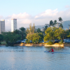 Thumbnail image for A Walk Along the Ala Wai Canal