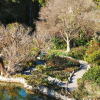 Thumbnail image for San Antonio's Japanese Tea Garden