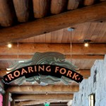 Review: Disney's Roaring Fork