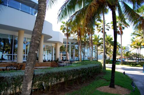 The Caribe Hilton