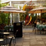 Solo Dining Review: Patio Del Nispero, San Juan