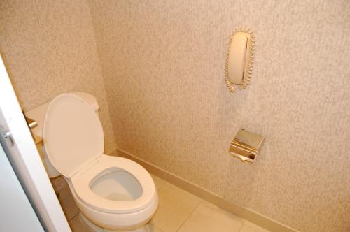 Phone by the toilet