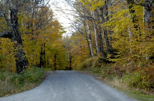 Toll Road, Stowe Mountain