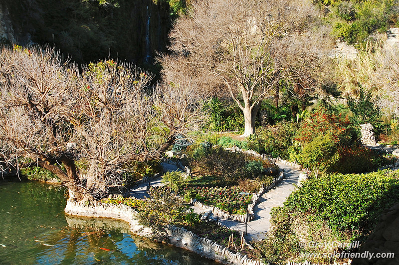 Post image for San Antonio's Japanese Tea Garden