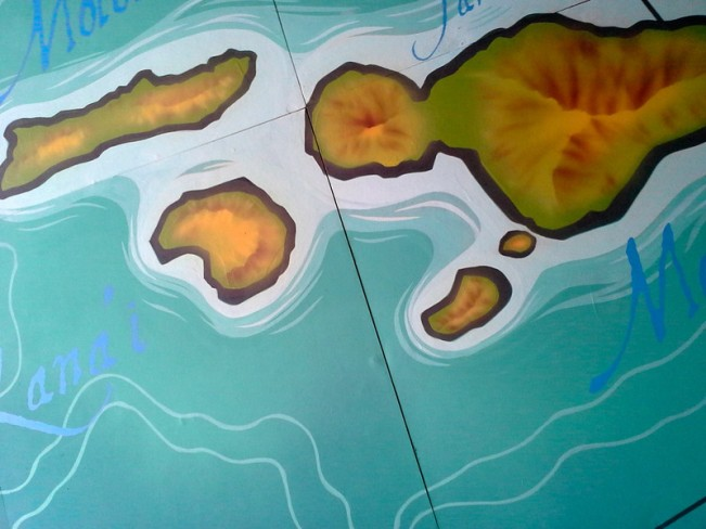 Surf Bar Ceiling Map