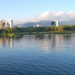 A Walk Along the Ala Wai Canal