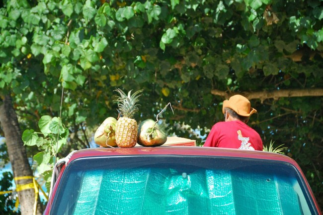 Fruit on truck